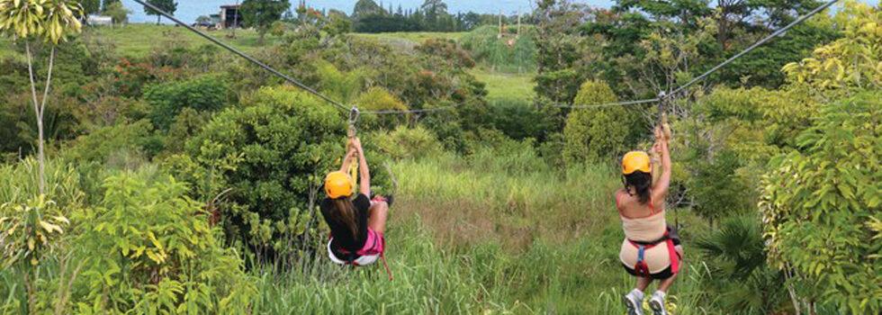 Botanical World Adventures Adventure Tours Hawaii