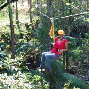 Zip Line at Botanical World Adventures