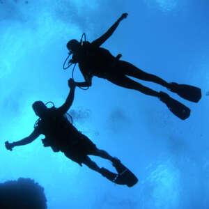 Learn to Scuba Dive in Hilo