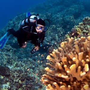 Scuba Diving in Kona
