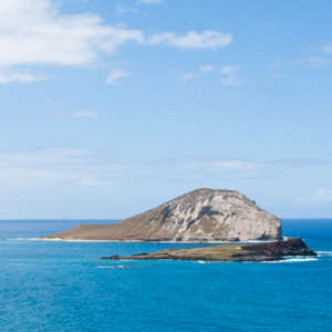 Circle Island Sightseeing Tour