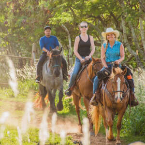 Backcountry Horseback Ride