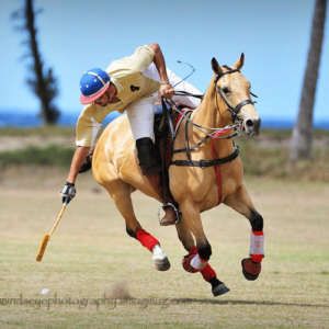 Horse Polo Lessons on the Beach