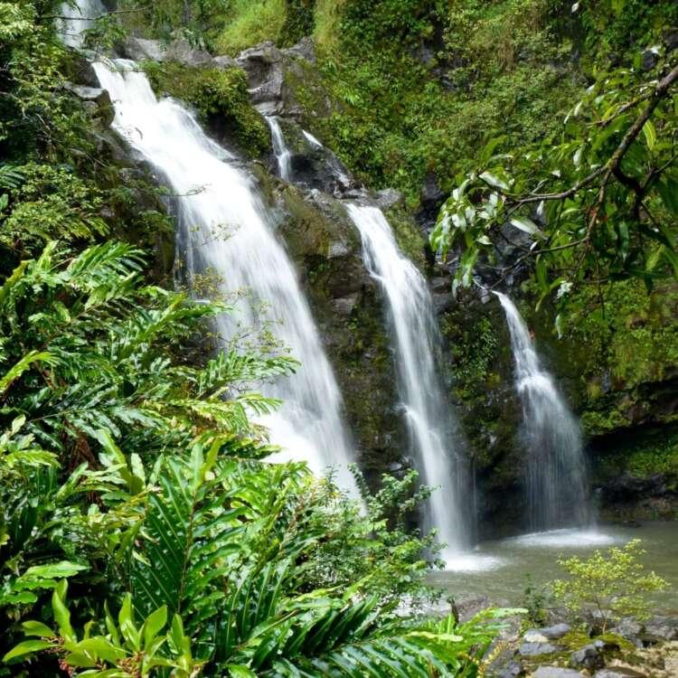 Hawaii vacation suites header