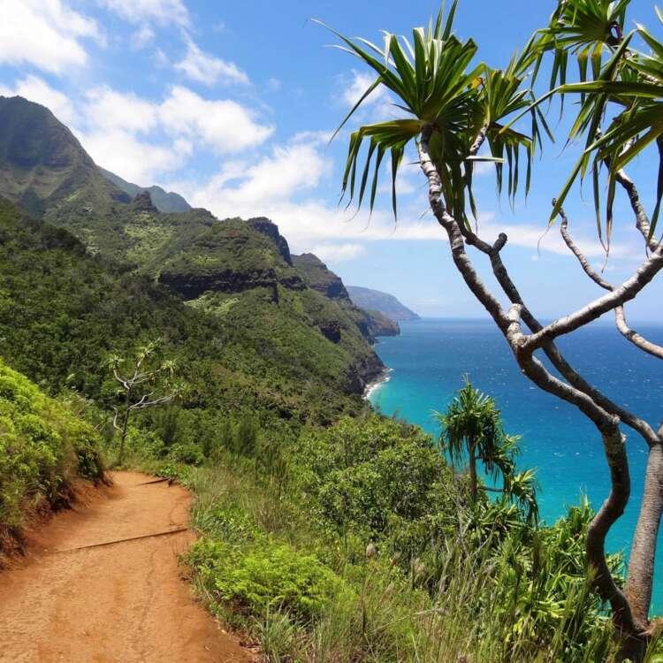 Napali coast 91676