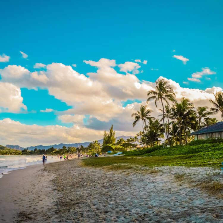 Grand welcome big island vacation rentals main image
