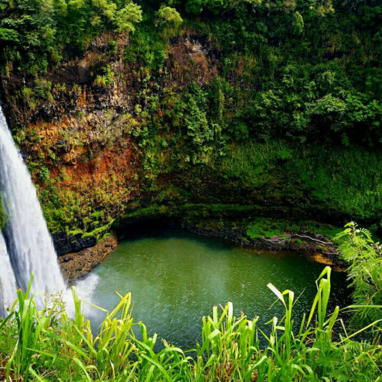 Next is hawaii background