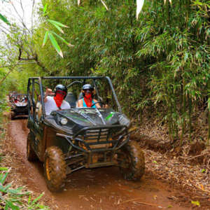Jungle Waterfall UTV 4x4 Tour