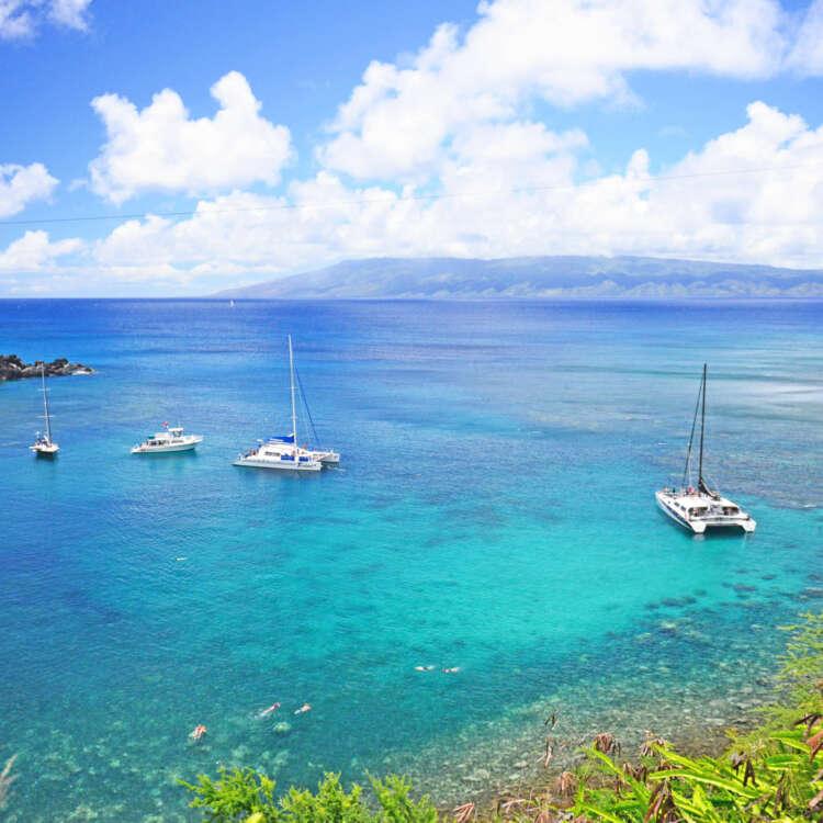 Maui coast hotel background