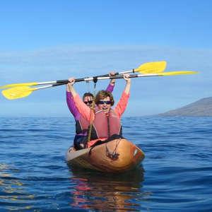 Kihei Kayak Turtle Tours