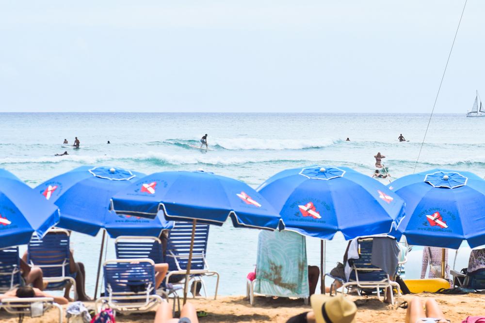 surfing-in-waikiki.jpg#asset:3165